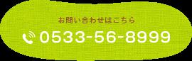 0533-56-8999